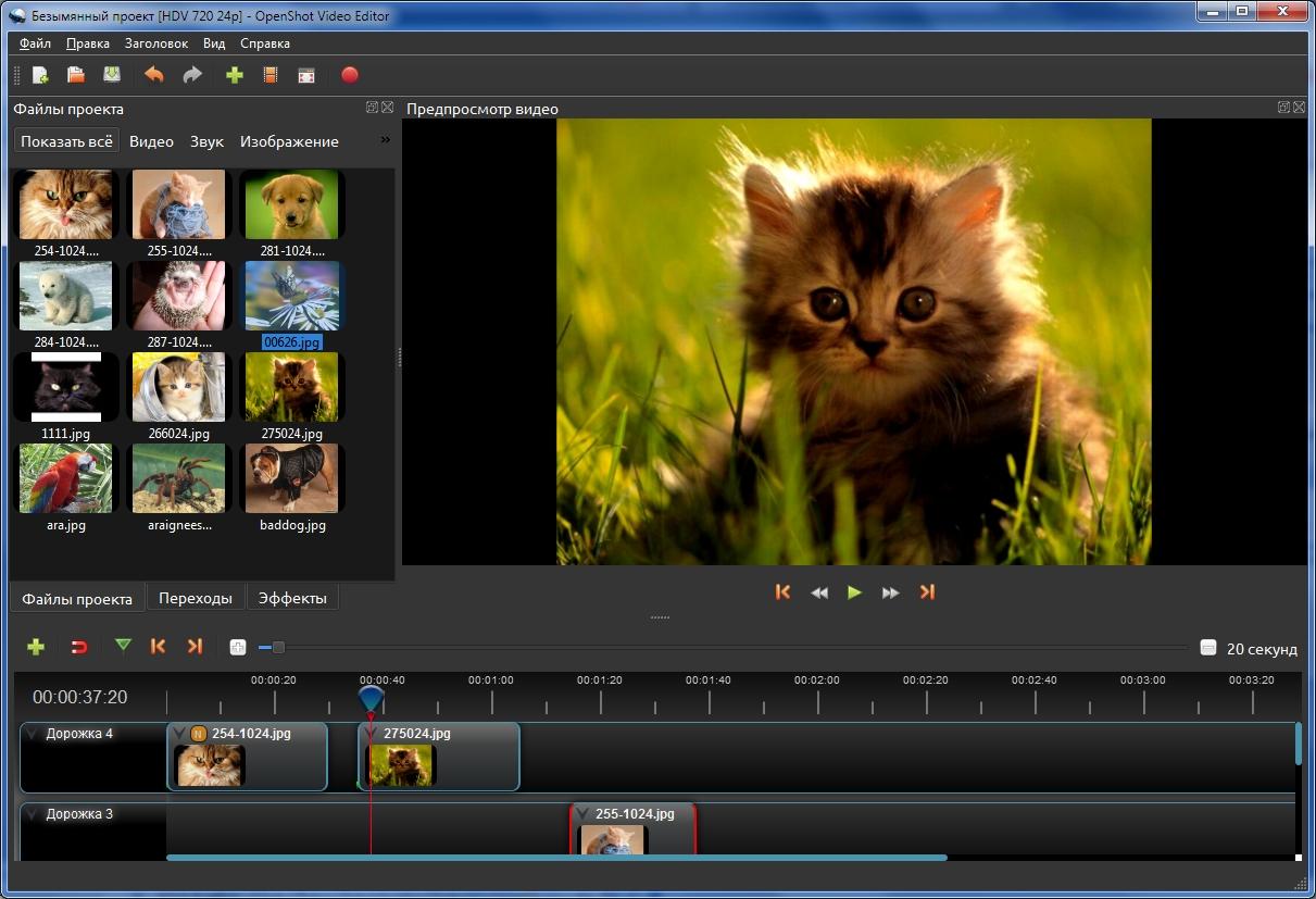 Сайт бесплатных программ для создания видеороликов продвижение сайтов и реклама в социальных сетях
